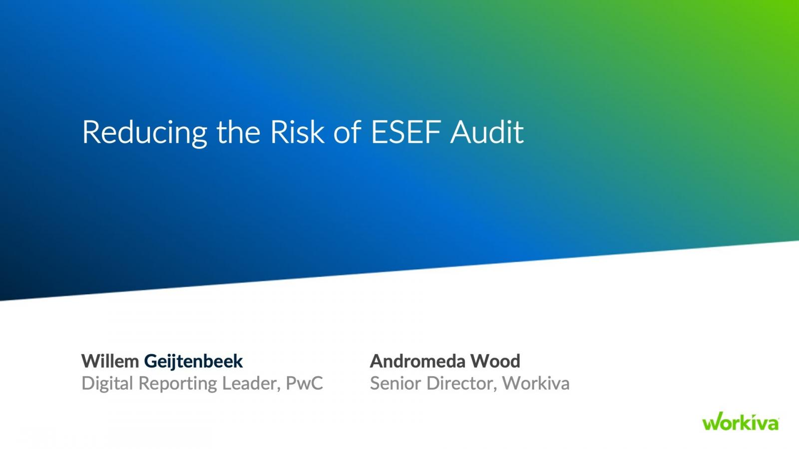 Reducing the Risk of ESEF Audit