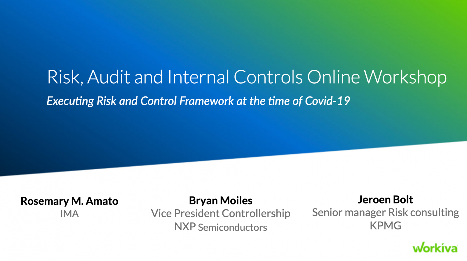 Risk Audit and Internal Controls Online Workshop