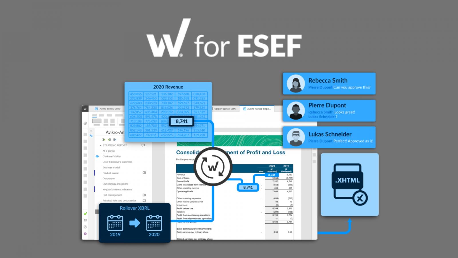 W for ESEF webinar