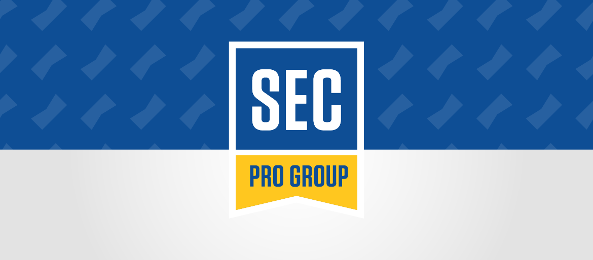 sec professional group