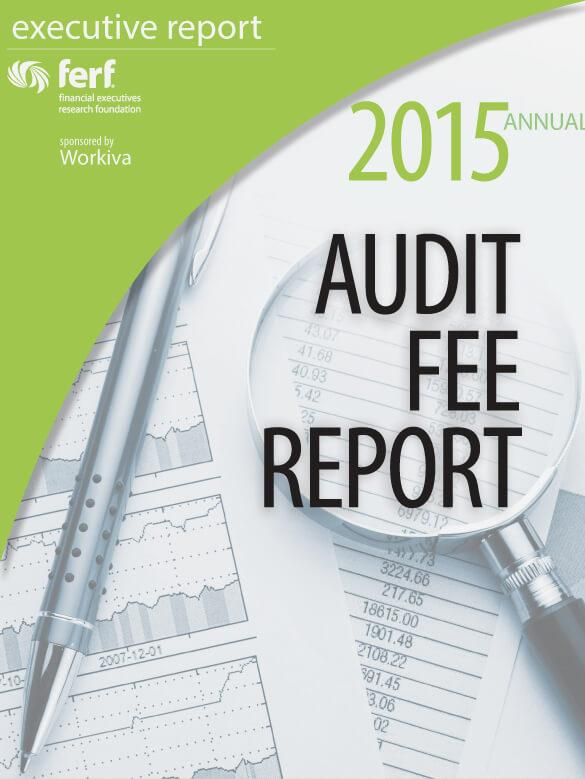 2015 audit fee report