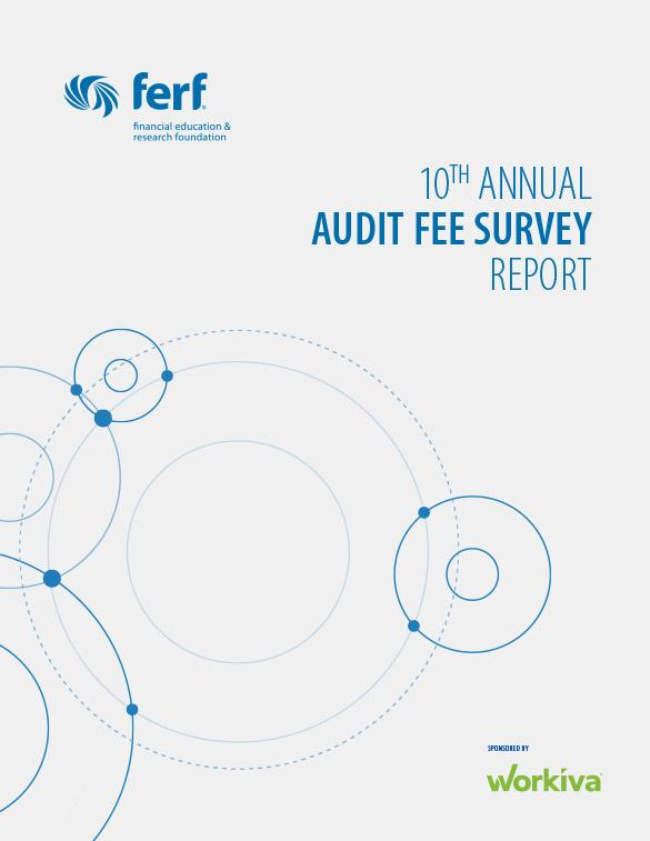 fei audit report