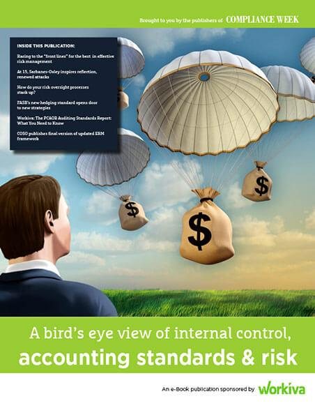 view of internal controls, accounting standards and risk
