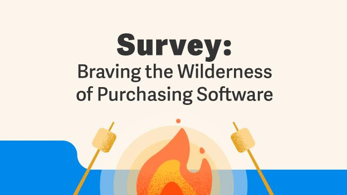 Survey: Braving the wilderness of purchasing software