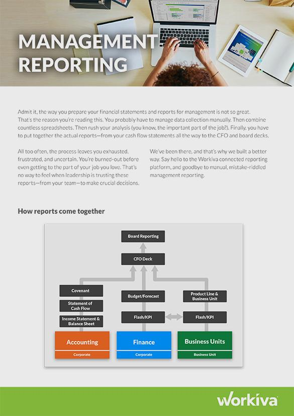 Management Reporting Brochure