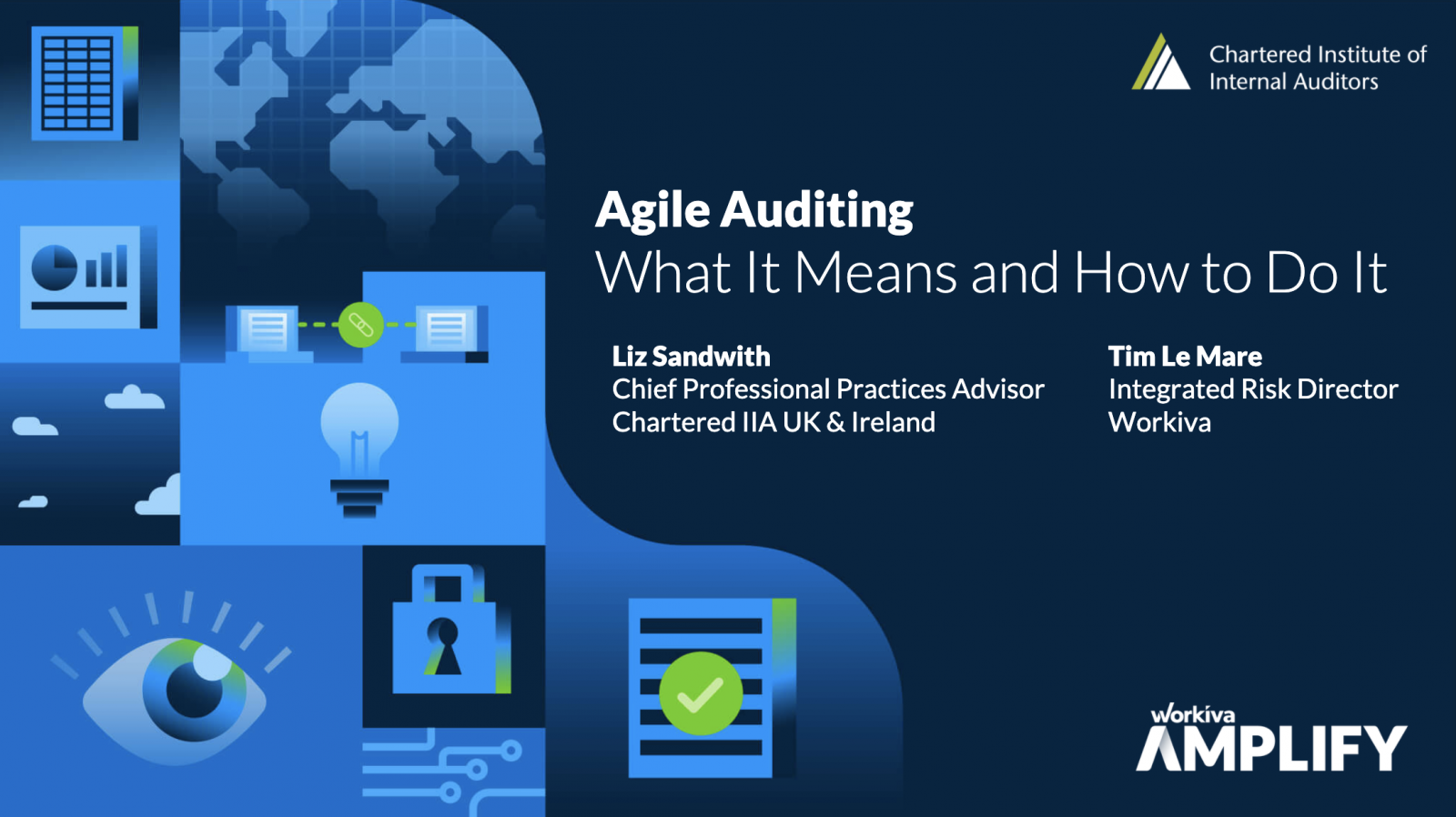 Agile Auditing webinar