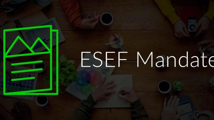 Managing the ESEF Mandate's Impact on Your Annual Financial Report