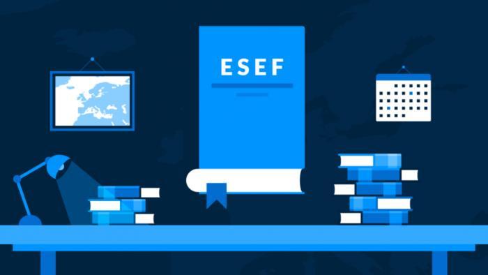 ESEF Taxonomy