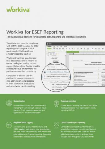 ESEF Reporting Datasheet